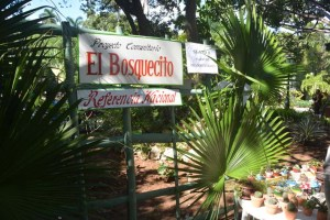 Exhibición en la Quinta de los Molinos