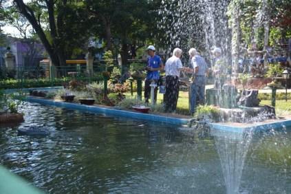 Diferentes actividades que se realizan en la Quinta de los Molinos tuvieron su espacio ante el publico en un Festival realizado durnate varios dias y por primera vez el modelismo naval tuvo su espacio