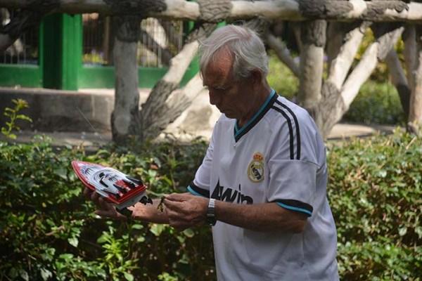 Modelismos de radio control en la Quinta de los Molinos