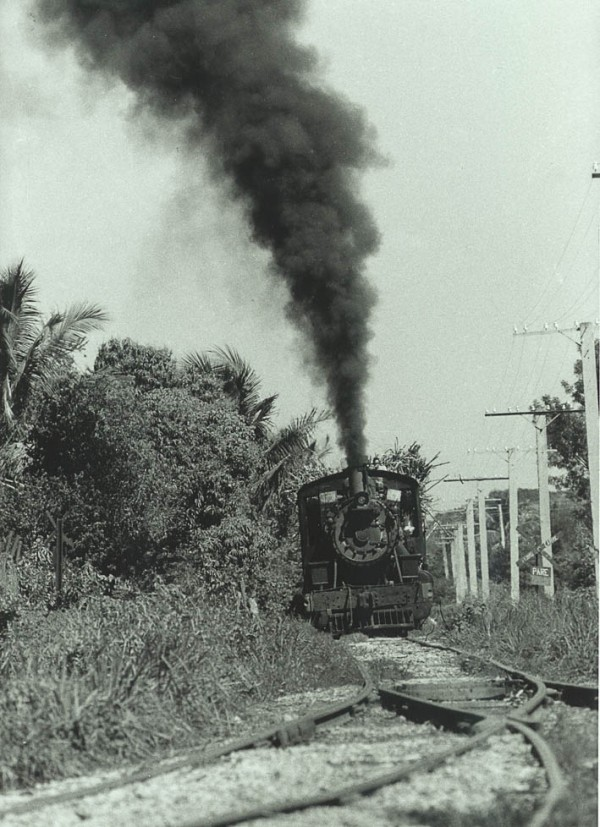 Trains31