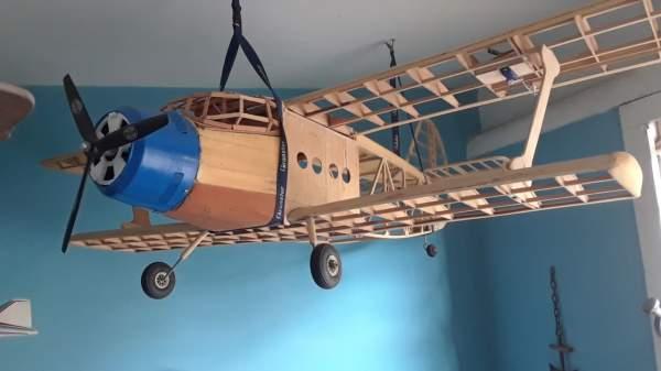 AN-2 Jorge Donate _8767544589339852800_n